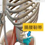 腰痛を訴える生徒がいたのでスクール授業を急遽変更 ~腰痛の大事な原因個所~