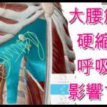 呼吸が浅いと腰痛になる?の動画説明