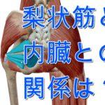 生理痛の改善は梨状筋にあるかも ~外旋六筋のアプローチと内臓との関係~