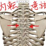 肩こりと肩甲骨 「肩甲骨を動かせ」だけではダメ